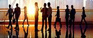 Strategic Organizational Coaching™