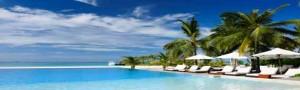 Executive Vitality: Values and Vacation