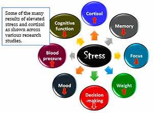 Stress vs. charateristics